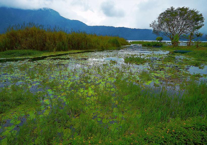 Lake Beratan - Bedugul Bali